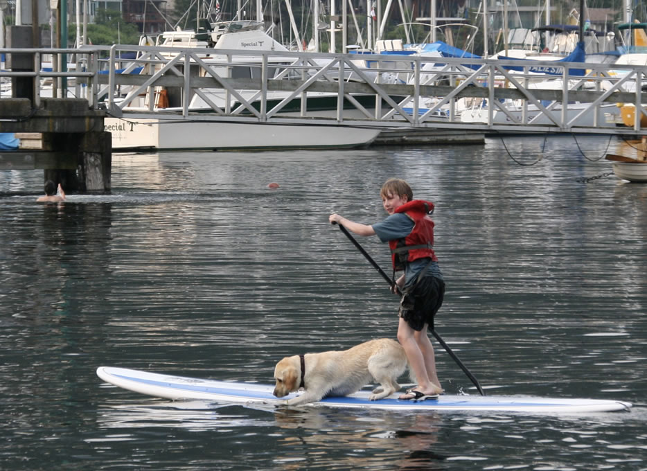 sup-rentals-deep-cove