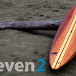 Sliver Paddleboards - 11'2