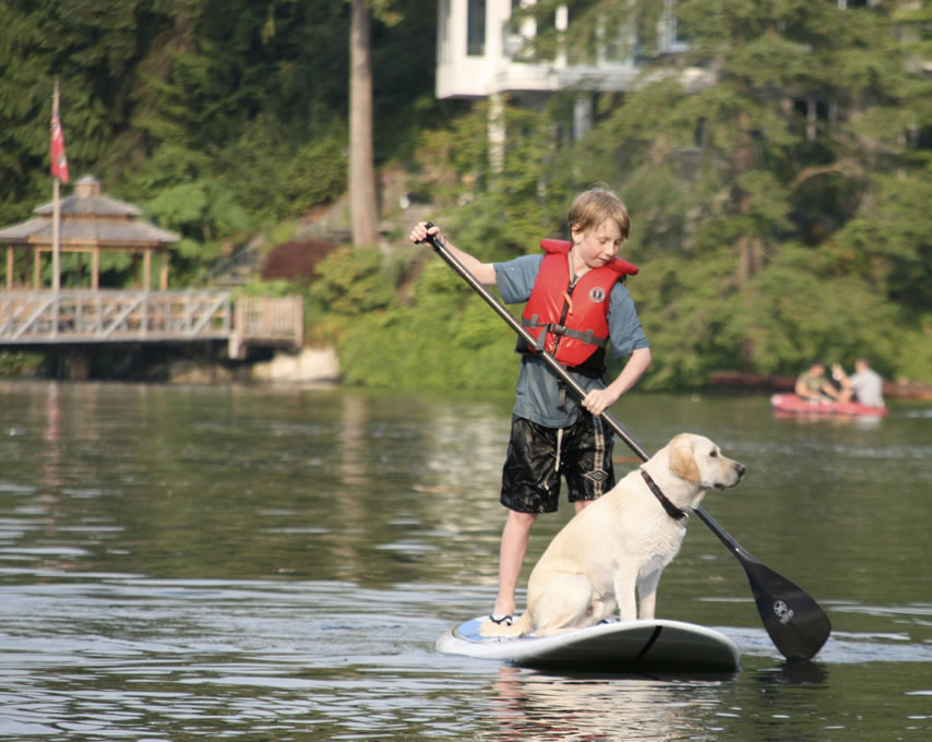 deep-cove-sup-with-your-dog