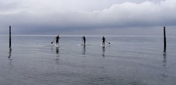 island-surf-co-polar-paddle